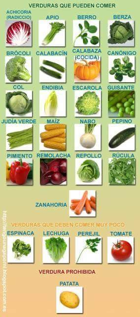 Verduras que pueden comer los Loros